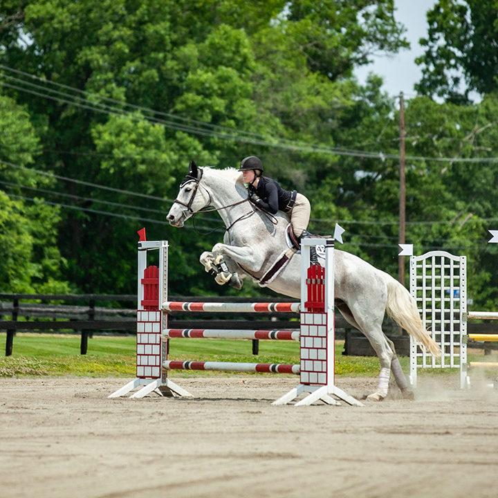 Middleburg Equestrian Festival